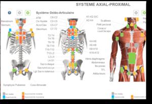 Écran saisie traitement et diagnostique ostéopathique