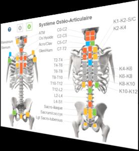 Logiciel d'ostéopathie Diagnosteo