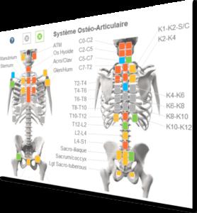 Logiciel d'osteopathie