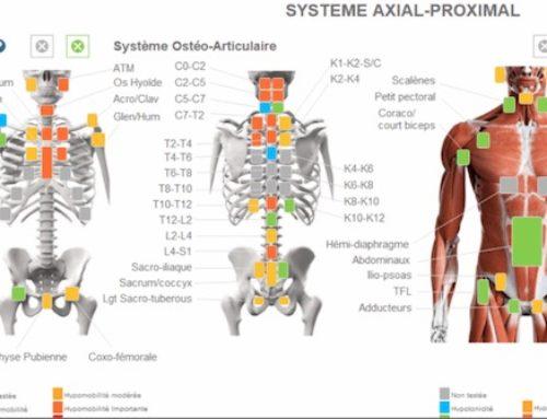 Comment bien remplir les fiches musculosquelettiques et viscérales